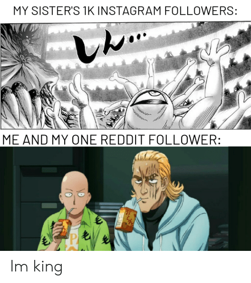 MY SISTER'S 1K INSTAGRAM FOLLOWERS ME AND MY ONE REDDIT