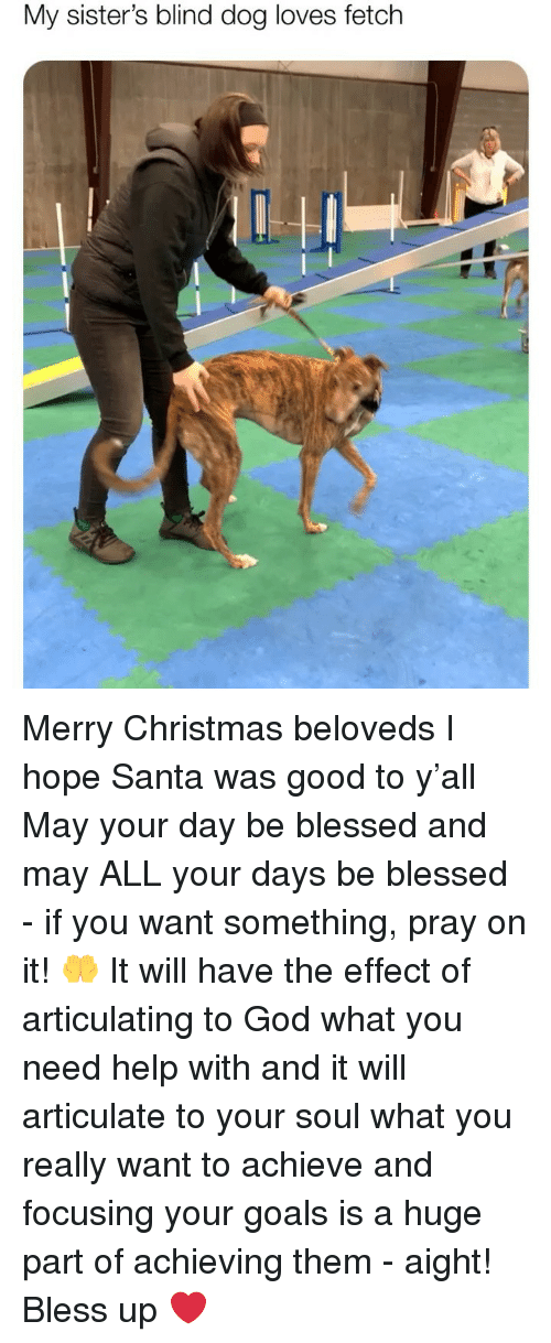 Bless Up, Blessed, and Christmas: My sister's blind dog loves fetch Merry Christmas beloveds I hope Santa was good to y'all May your day be blessed and may ALL your days be blessed - if you want something, pray on it! 🤲 It will have the effect of articulating to God what you need help with and it will articulate to your soul what you really want to achieve and focusing your goals is a huge part of achieving them - aight! Bless up ❤️
