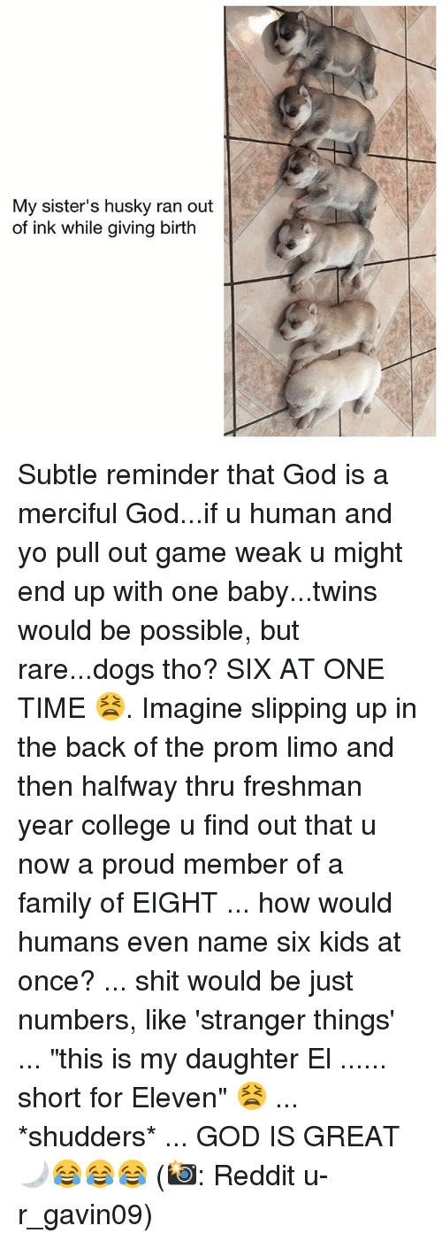 "College, Dogs, and Family: My sister's husky ran out  of ink while giving birth Subtle reminder that God is a merciful God...if u human and yo pull out game weak u might end up with one baby...twins would be possible, but rare...dogs tho? SIX AT ONE TIME 😫. Imagine slipping up in the back of the prom limo and then halfway thru freshman year college u find out that u now a proud member of a family of EIGHT ... how would humans even name six kids at once? ... shit would be just numbers, like 'stranger things' ... ""this is my daughter El ...... short for Eleven"" 😫 ... *shudders* ... GOD IS GREAT 🌙😂😂😂 (📸: Reddit u-r_gavin09)"