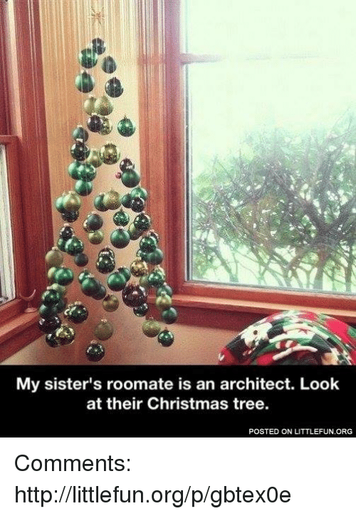 memes christmas tree and trees my sisters roomate is an architect look - What To Get My Sister For Christmas
