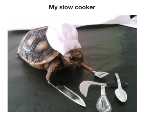 my slow cooker 28399592 just bought a slow cooker slow cooker meme on me me