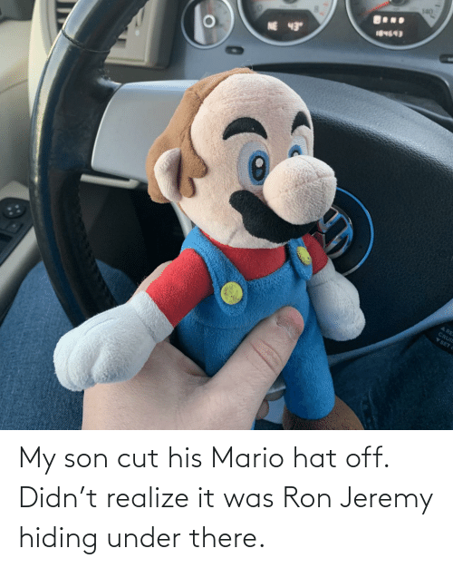 Mario, Ron Jeremy, and Hat: My son cut his Mario hat off. Didn't realize it was Ron Jeremy hiding under there.