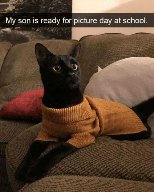 Memes, School, and 🤖: My son is ready for picture day at school