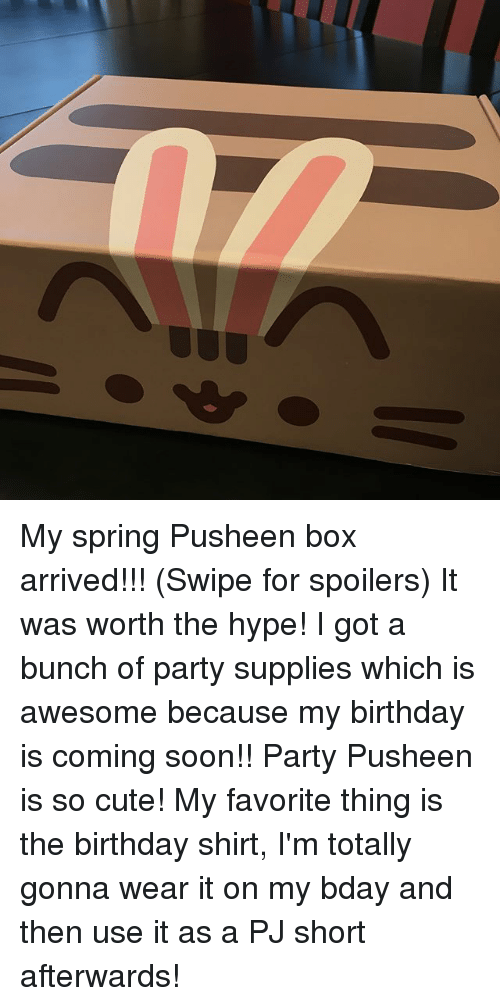 Birthday, Cute, and Hype: My spring Pusheen box arrived!!! (Swipe for spoilers) It was worth the hype! I got a bunch of party supplies which is awesome because my birthday is coming soon!! Party Pusheen is so cute! My favorite thing is the birthday shirt, I'm totally gonna wear it on my bday and then use it as a PJ short afterwards!