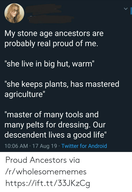 """Android, Life, and Twitter: My stone age ancestors are  probably real proud of me.  """"she live in big hut, warm""""  """"she keeps plants, has mastered  agriculture""""  II  """"master of many tools and  many pelts for dressing. Our  descendent lives a good life""""  10:06 AM 17 Aug 19 Twitter for Android Proud Ancestors via /r/wholesomememes https://ift.tt/33JKzCg"""