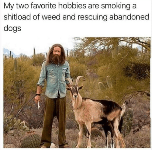 [Image: my-two-favorite-hobbies-are-smoking-a-sh...731048.png]