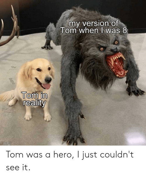 My Version of Tom When K Was 8 Tom in Reality Tom Was a Hero