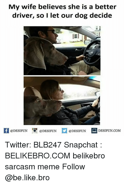 Be Like, Meme, and Memes: My wife believes she is a better  driver, so I let our dog decide  K @DESIFUN 증@DESIFUN  @DESIFUN-DESIFUN.COM Twitter: BLB247 Snapchat : BELIKEBRO.COM belikebro sarcasm meme Follow @be.like.bro