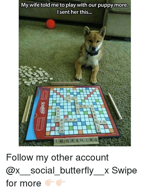 Memes, 🤖, and Play: My wife told me to play with our puppy more.  I sent her this... Follow my other account @x__social_butterfly__x Swipe for more 👉🏻👉🏻