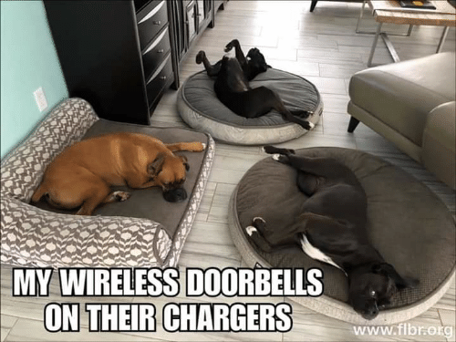 Memes, Chargers, and 🤖: MY WIRELESS DOORBELLS  ON THEIR CHARGERS  www.fibro