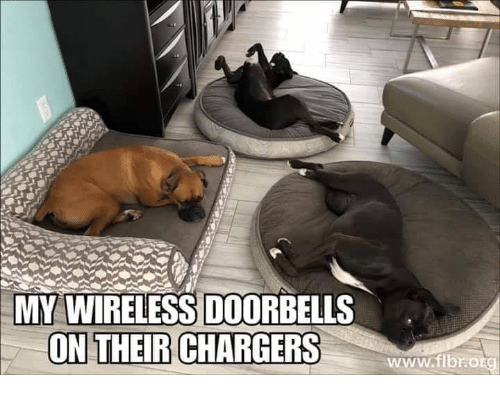 Memes, Chargers, and 🤖: MY WIRELESS DOORBELLS  ON THEIR CHARGERS  www.ibrotg