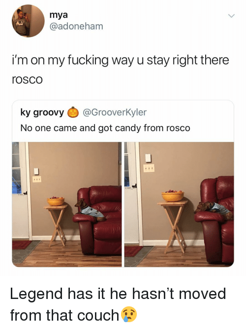 Candy, Fucking, and Couch: mya  @adoneham  i'm on my fucking way u stay right there  rosco  ky groovy @Grooverkyler  No one came and got candy from rosco Legend has it he hasn't moved from that couch😢