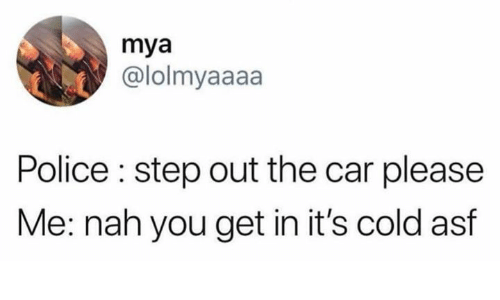 Police, Cold, and Humans of Tumblr: mya  @lolmyaaaa  Police : step out the car please  Me: nah you get in it's cold asf