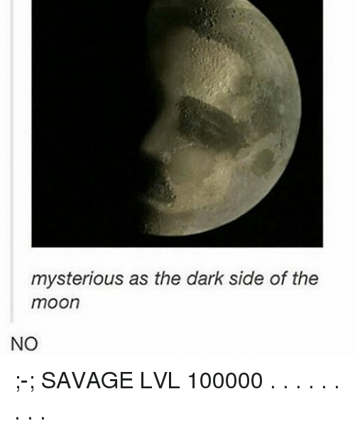 Dark Side of the Moon, Memes, and Moon: mysterious as the dark side of the  moon  NO ;-; SAVAGE LVL 100000 . . . . . . . . .