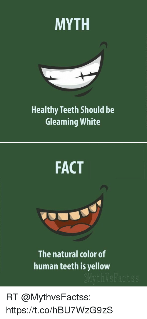 Myth Healthy Teeth Should Be Gleaming White Fact The Natural Color