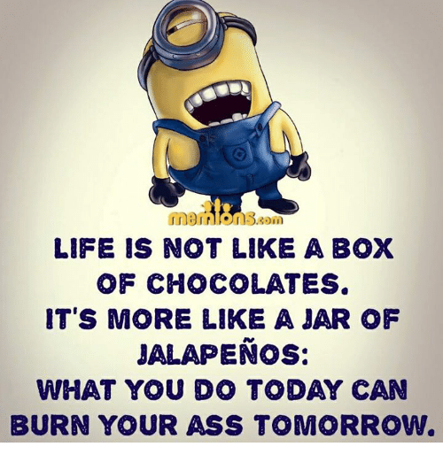 Memes, What You Doing, and 🤖: n.3.gon  LIFE IS NOT LIKE A BOX  OF CHOCOLATES.  IT'S MORE LIKE A JAR OF  JALAPENO  WHAT YOU DO TODAY CAN  BURN YOUR ASS TOMORROW.