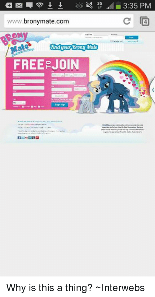 n 3g 335 pm c wwwbrony matecom had your hrony mate free join why is