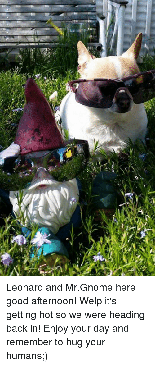 N Leonard And Mrgnome Here Good Afternoon Welp Its Getting Hot So