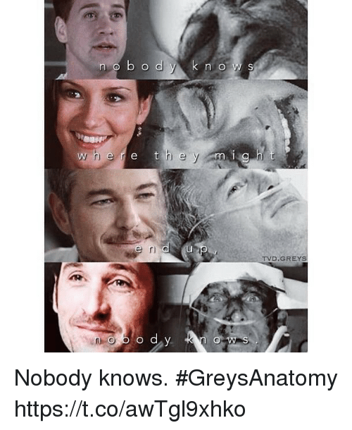 Memes, 🤖, and Tvd: n o  e r e  TVD.GREYS Nobody knows. #GreysAnatomy https://t.co/awTgl9xhko