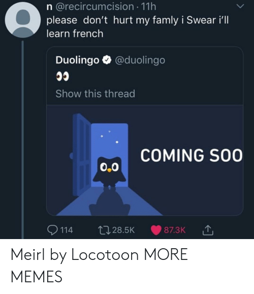Dank, Memes, and Target: n @recircumcision 11h  please don't hurt my famly i Swear i'll  learn french  Duolingo @duolingo  Show this thread  COMING SO0  0.0  9114 t028.5K 87.3K Meirl by Locotoon MORE MEMES