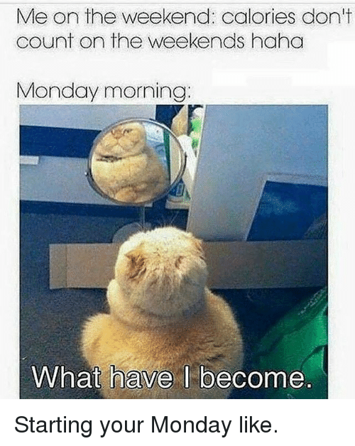 Gym, The Weekend, and Monday: n the weekend: calories a  count on the weekends haha  Monday morning:  What have I become Starting your Monday like.