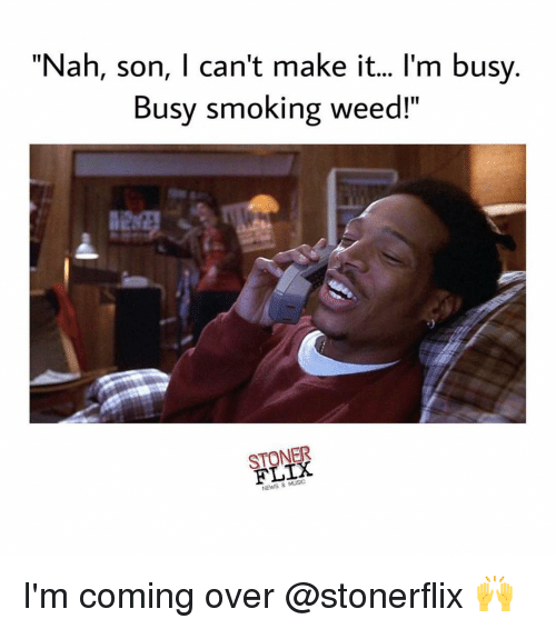 Nah Son I Cant Make It Im Busy Busy Smoking Weed Stoner News