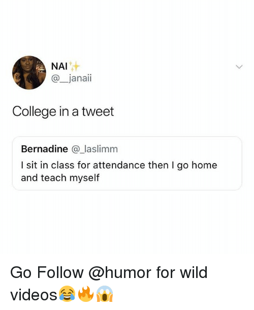 College, Funny, and Videos: NAI  @_janaii  College in a tweet  Bernadine @ laslimm  I sit in class for attendance then I go home  and teach myself Go Follow @humor for wild videos😂🔥😱