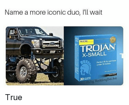 True, Dank Memes, and Iconic: Name a more iconic duo, l'll wait  TROJAN  X-SMALL  w.  Perfect ft orpenises  under 15 inches  30A  fb/ig: ReddingBelike True