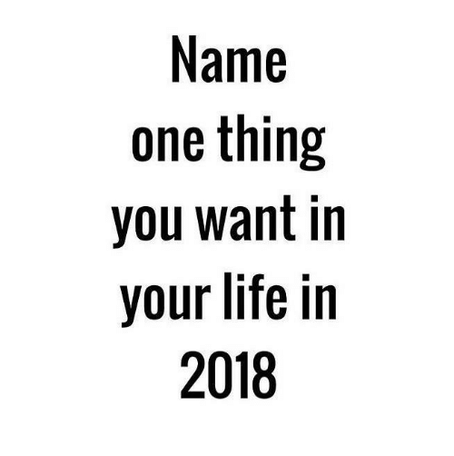 Life, Memes, and 🤖: Name  one thing  you want in  your life in  2018
