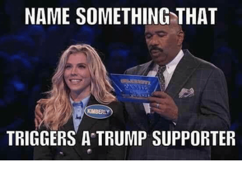 name something that kimberly triggers a trump supporter 24286524 name something that kimberly triggers a trump supporter meme on