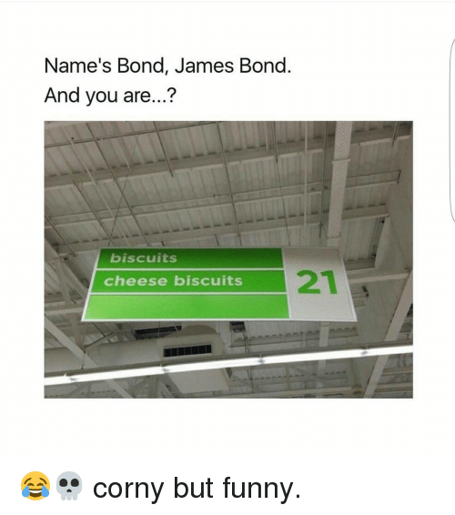 names bond james bond and you are biscuits cheese biscuits 8506501 ✅ 25 best memes about bond james bond bond james bond memes,The Names Bond Meme