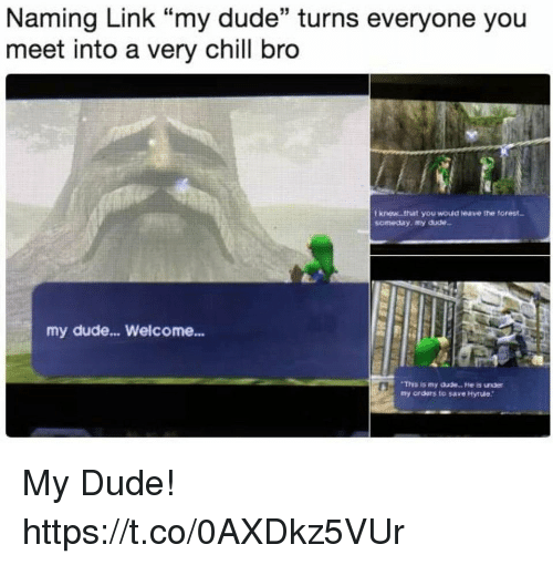 """Chill, Dude, and Link: Naming Link """"my dude"""" turns everyone you  meet into a very chill bro  I knew .that you wouid leave the torest  someday, my dude  my dude... Welcome...  Thhs is my dude.. . He is under  my orders to save Hyrue My Dude! https://t.co/0AXDkz5VUr"""