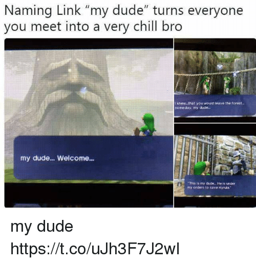 """Chill, Dude, and Link: Naming Link """"my dude"""" turns everyone  you meet into a very chill bro  t knew...that you would leave the torest..  someday, my duae.  my dude... Welcome...  This is my dude.. . He is under  my orders to save Hyrule. my dude https://t.co/uJh3F7J2wI"""