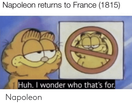 Huh, France, and Wonder: Napoleon returns to France (1815)  Huh. I wonder who that's for. Napoleon