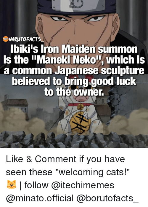 "Cats, Facts, and Memes: NARW10 FACTS  Ibiki's Iron Maiden summon  is the ""Maneki Neko T, which is  a common Japanese sculpture  believed to bring good luck  to the owner. Like & Comment if you have seen these ""welcoming cats!"" 🐱 