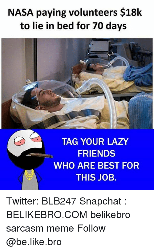 Be Like, Friends, and Lazy: NASA paying volunteers $18k  to lie in bed for 70 days  TAG YOUR LAZY  FRIENDS  WHO ARE BEST FOR  THIS JOB.  M  , Twitter: BLB247 Snapchat : BELIKEBRO.COM belikebro sarcasm meme Follow @be.like.bro