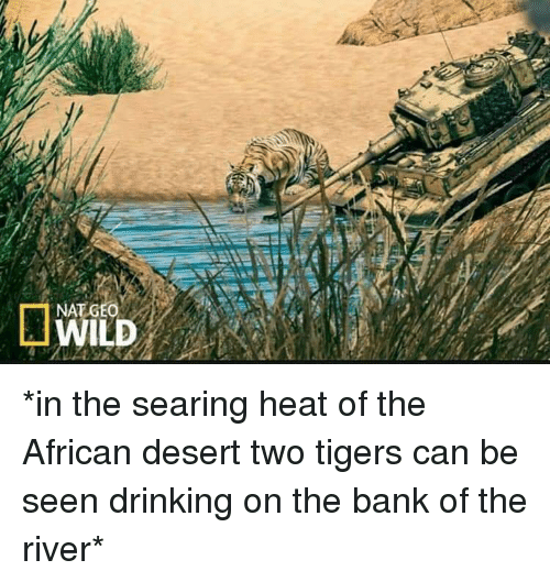 Drinking, Bank, and Heat: NAT GEO