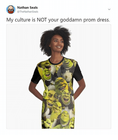 3cc07b02c73 Nathan Seals My Culture Is NOT Your Goddamn Prom Dress