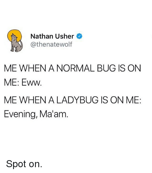 Nathan Usher ME WHEN a NORMAL BUG IS ON ME Eww ME WHEN a