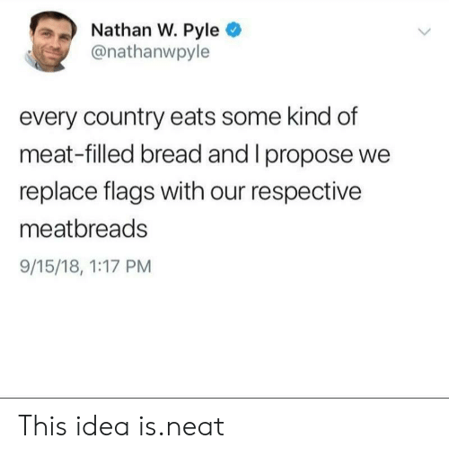 Idea, Bread, and Flags: Nathan W. Pyle  @nathanwpyle  every country eats some kind df  meat-filled bread and I propose we  replace flags with our respective  meatbreads  9/15/18, 1:17 PM This idea is.neat
