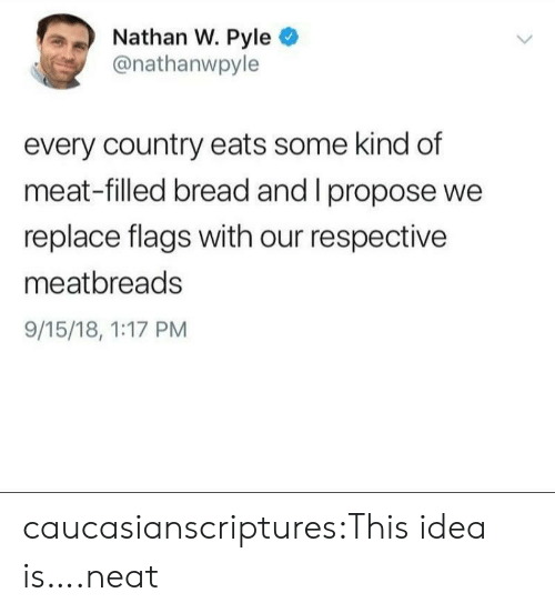 Tumblr, Blog, and Idea: Nathan W. Pyle  @nathanwpyle  every country eats some kind df  meat-filled bread and I propose we  replace flags with our respective  meatbreads  9/15/18, 1:17 PM caucasianscriptures:This idea is….neat