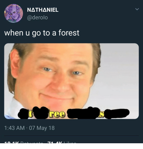 Forest, May, and When U: NATHANIEL  @derolo  when u go to a forest  1:43 AM 07 May 18