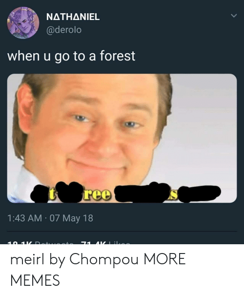 Dank, Memes, and Target: NATHANIEL  @derolo  when u go to a forest  1:43 AM 07 May 18 meirl by Chompou MORE MEMES