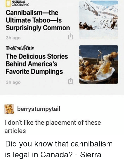 Memes, Canada, and Common: NATIONAL  GEOGRAPHIC  Cannibalism-the  Ultimate Taboo-Is  Surprisingly Common  3h ago  The Delicious Stories  Behind America's  Favorite Dumplings  3h ago  berrystumpytail  I don't like the placement of these  articles Did you know that cannibalism is legal in Canada? - Sierra