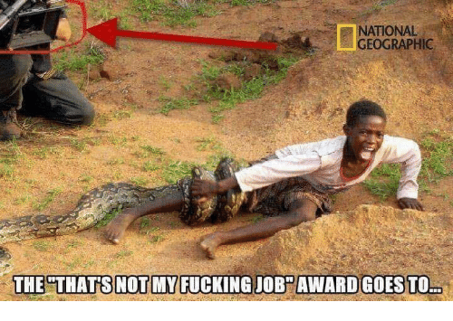 Memes, 🤖, and Job: NATIONAL  GEOGRAPHIC  THE THATS NOT MY FUCKING JOB AWARD GOES TO