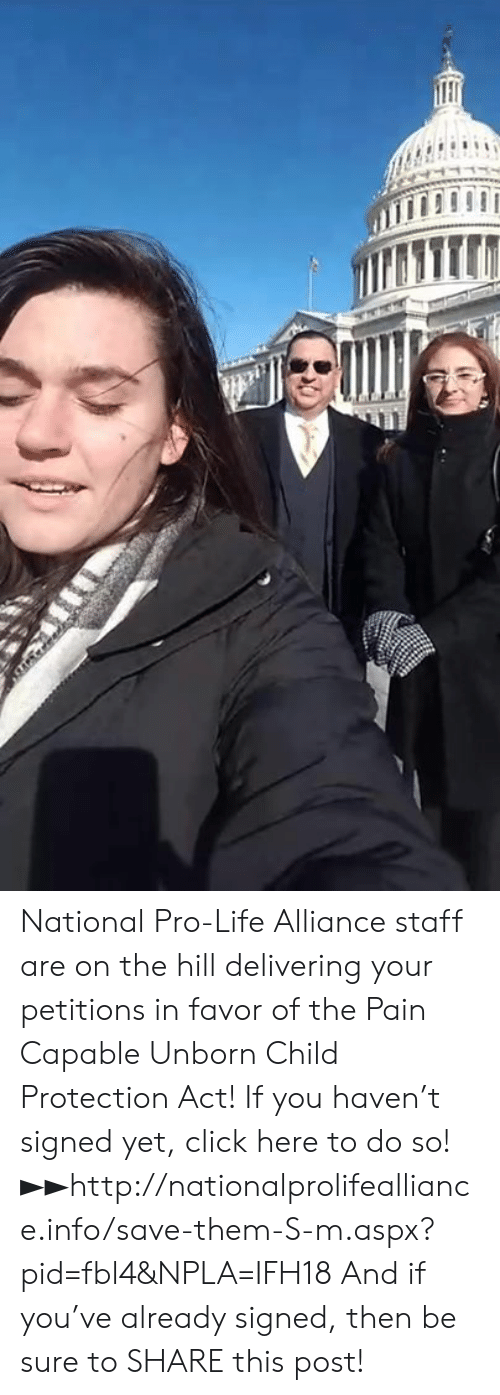 Click, Life, and Memes: National Pro-Life Alliance staff are on the hill delivering your petitions in favor of the Pain Capable Unborn Child Protection Act!  If you haven't signed yet, click here to do so! ►►http://nationalprolifealliance.info/save-them-S-m.aspx?pid=fbl4&NPLA=IFH18  And if you've already signed, then be sure to SHARE this post!