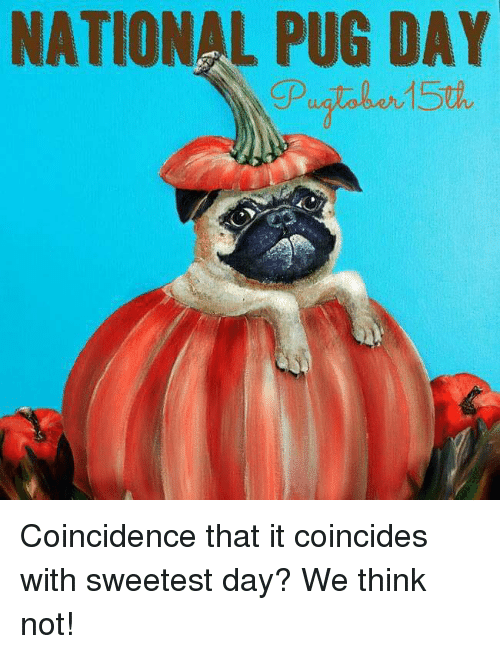 NATIONAL PUG DAY Coincidence That It Coincides With ...