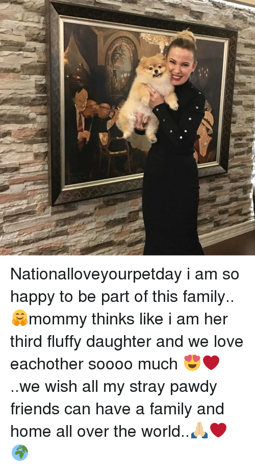 Family, Friends, and Love: Nationalloveyourpetday i am so happy to be part of this family..🤗mommy thinks like i am her third fluffy daughter and we love eachother soooo much 😍❤️..we wish all my stray pawdy friends can have a family and home all over the world..🙏🏼❤️🌍