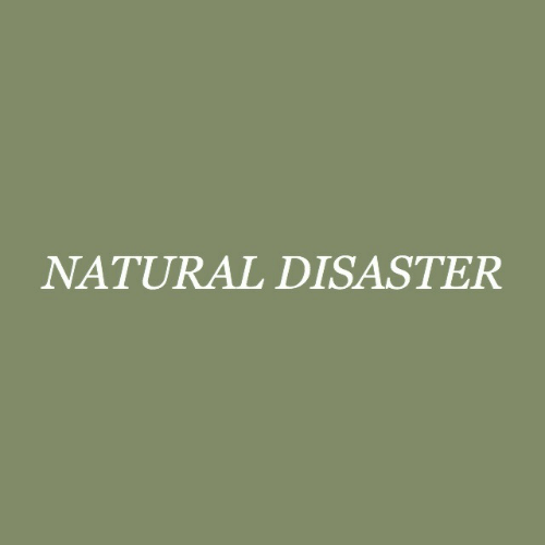 Disaster, Natural, and Natural Disaster: NATURAL DISASTER