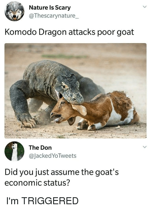 Nature Is Scary Komodo Dragon Attacks Poor Goat the Don Did